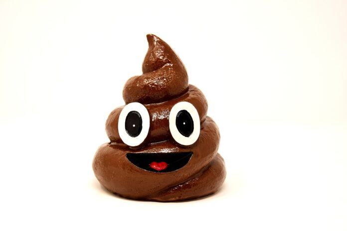 Poop' May Prevent Weight Gain