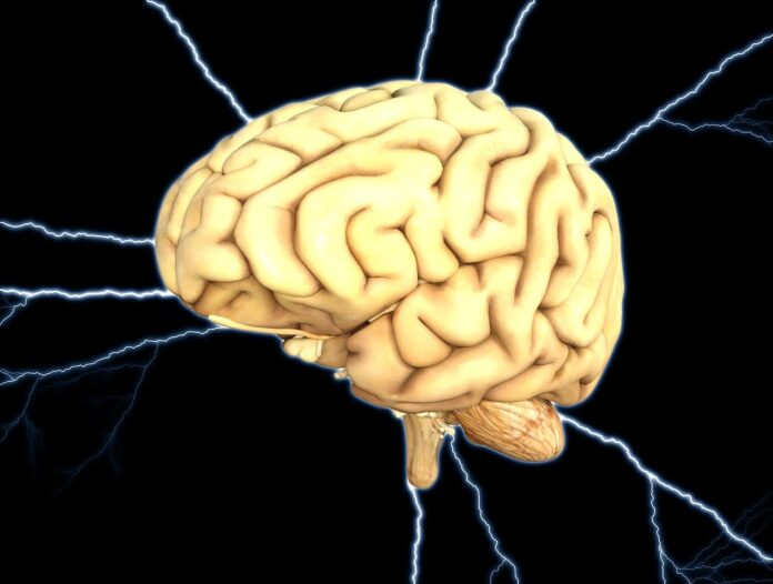 Glibenclamide Parkinson's disease