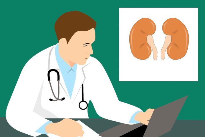 Primary hyperoxaluria type 1 treatment medicine