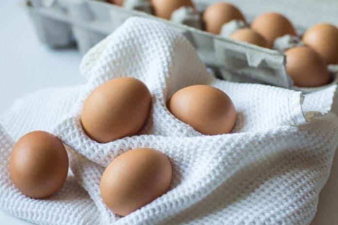 expired eggs