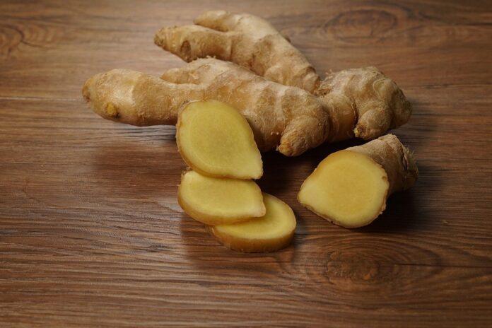 Belly Fat ginger